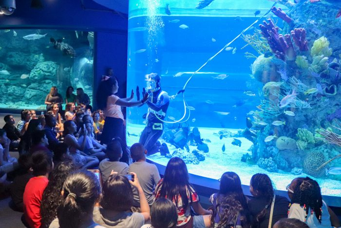 Students watch dive presentation during field trip
