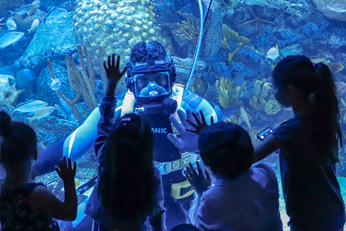 Guests interact with divers in Cheniere Mesoamerican Barrier Reef exhibit